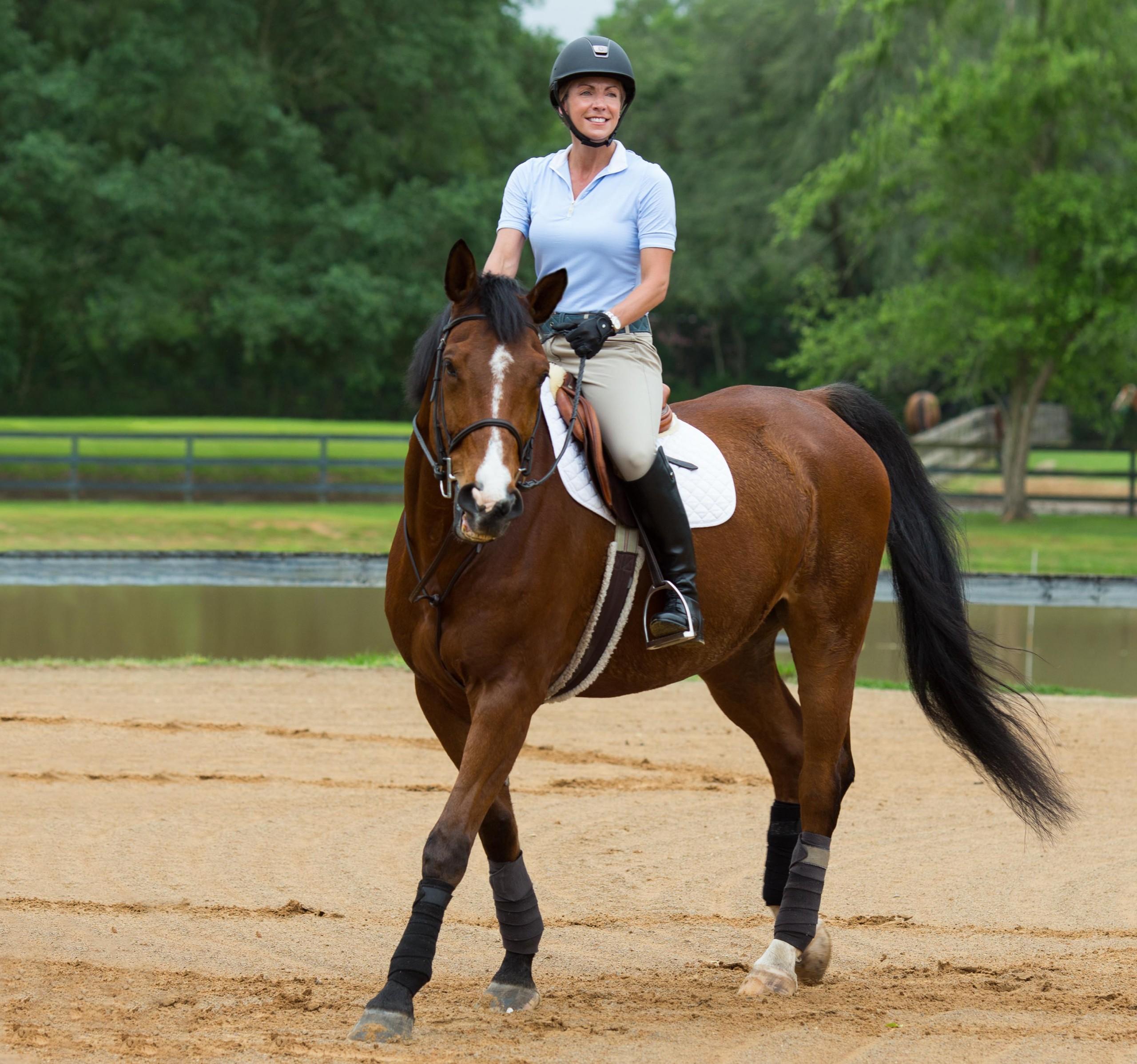 Summerfun Horse